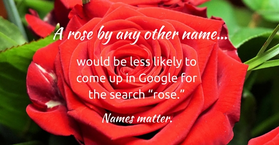 rose choose domain names matter